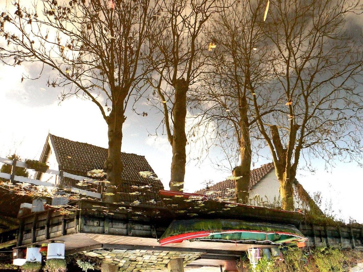 23-11-2007 wandeling varkensland 006[1]