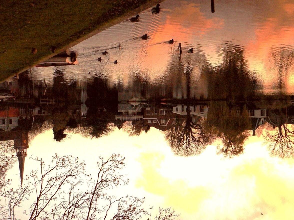 23-11-2007 wandeling varkensland 044[1]