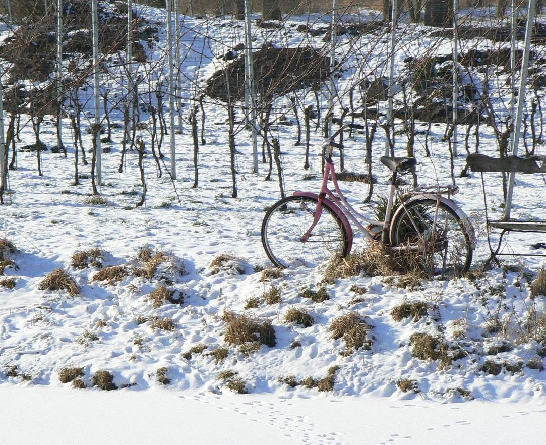 sneeuwwandeling langs de Amstel 061[1]